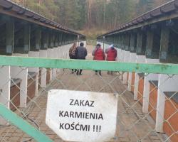 Nowy wolontariat w Tomarynach